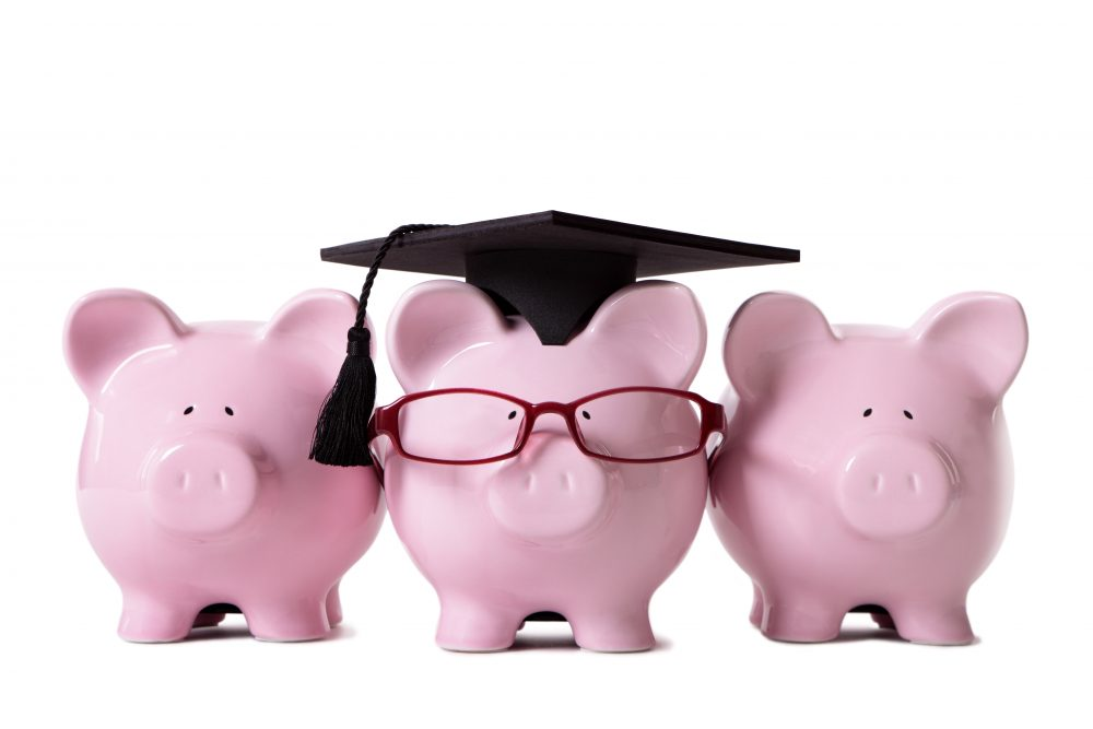 Row of pink piggy banks, one dressed as a college graduate with mortar board and glasses. Isolated on white.