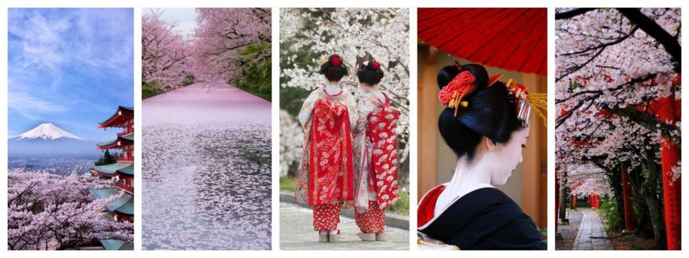descobrir-estilo-japão